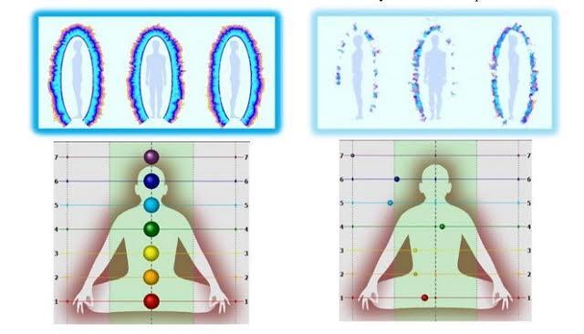 Biowell vitaliteitsscan